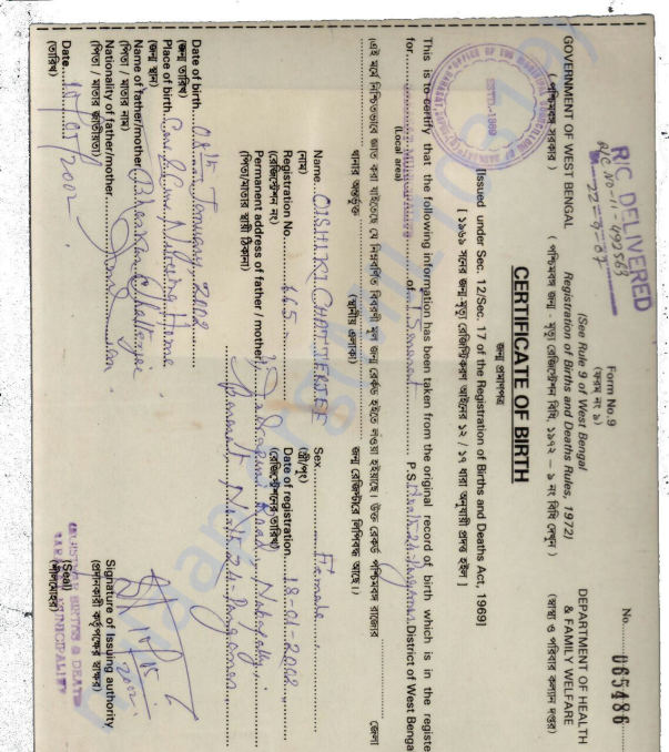 Rini's Birth Certificate