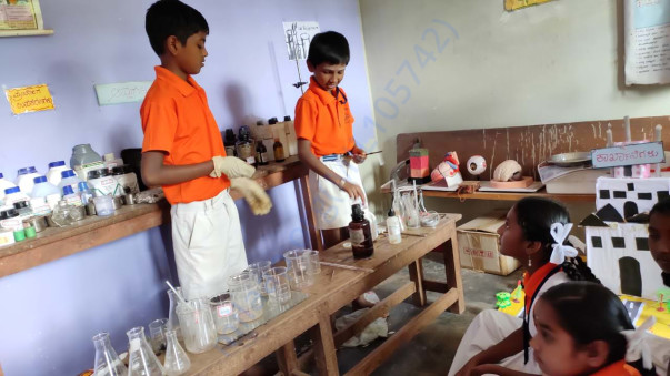 students doing lab experiments with enthusiasm