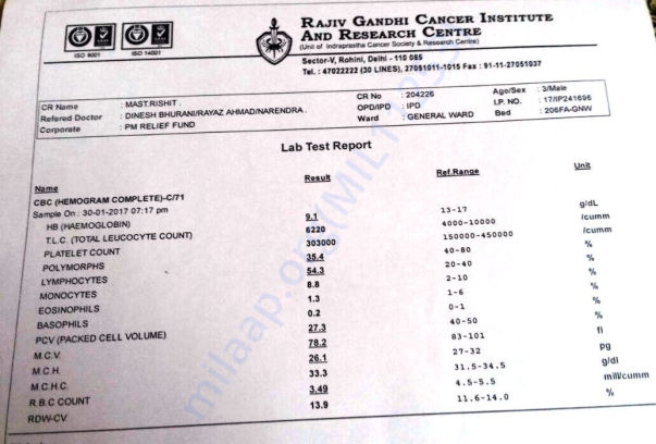 Lab Test Report 1