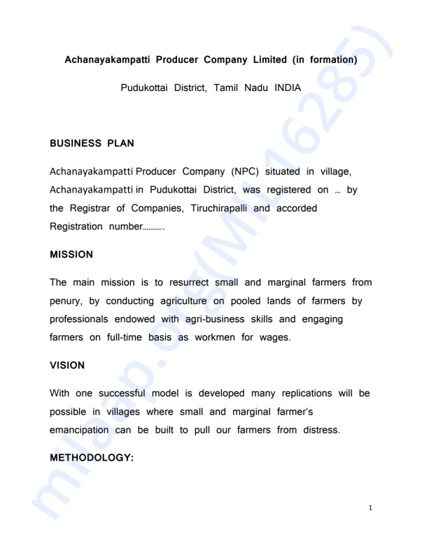 Business Plan of our Project