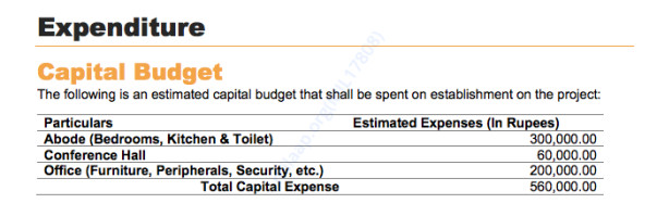Capital Budget Expenditure