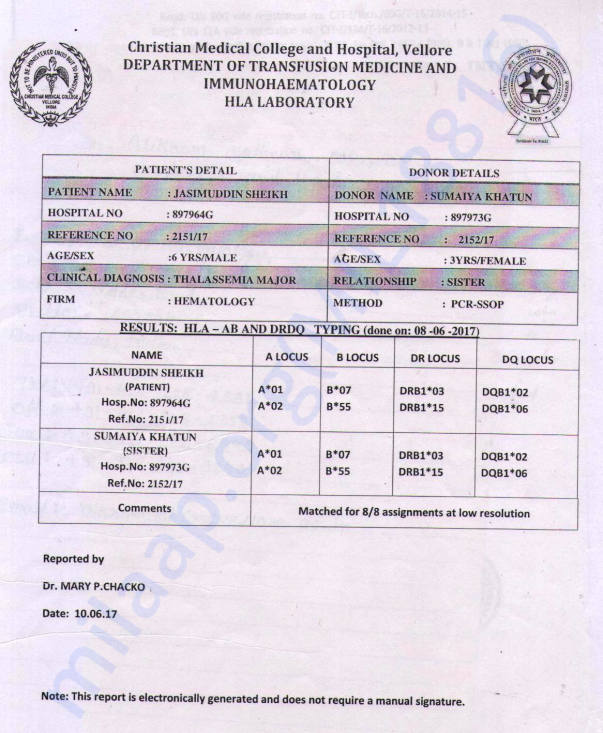 HLA TEST REPORT