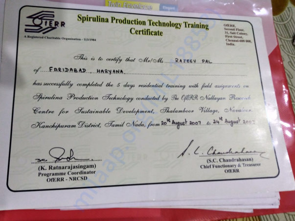 Training Certificate in Spirulina cultivation
