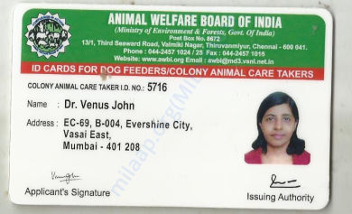dog feeder card from animal welfare board