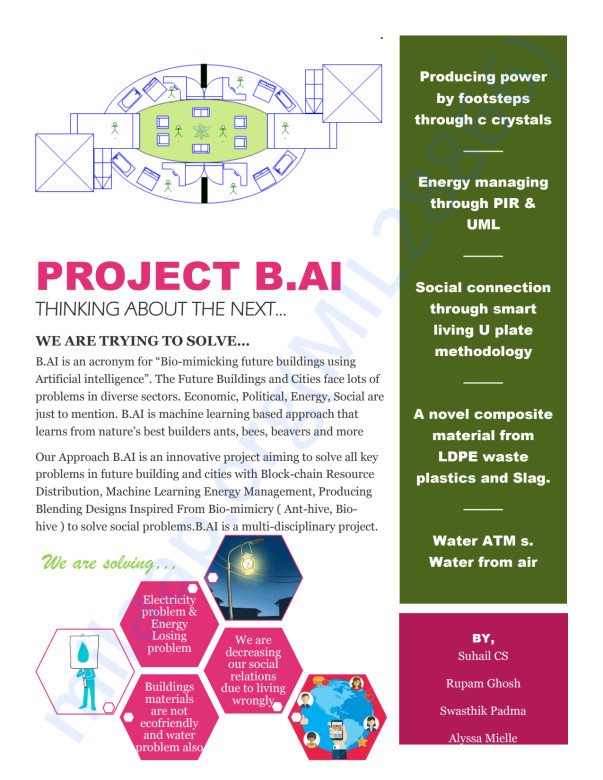 The project Summery: Project BAI