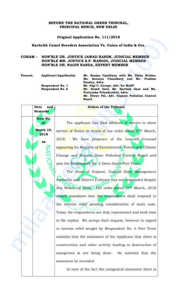 Temporary Stay Order by the NGT (page 1)