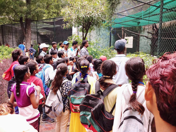 Wild life tour of our academy to Kanpur Zoo
