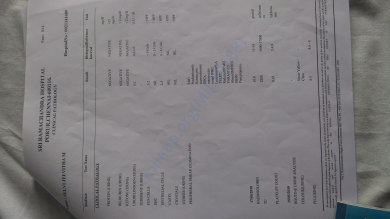 Medical test report5