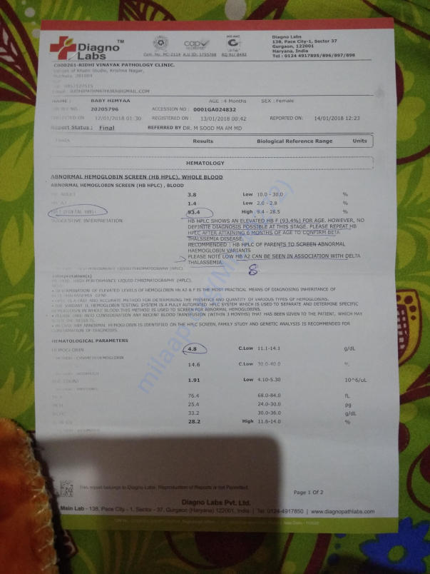 Thalassemia test report