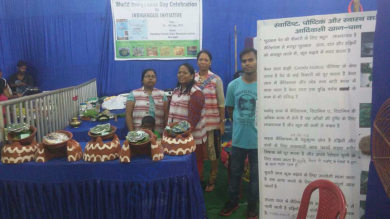 Displaying health benefits of indigenous food @ a Fair