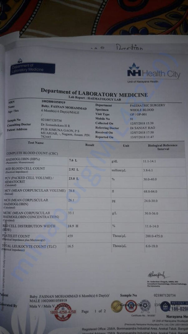 Banglore Narayana hospital report