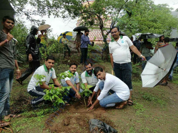 Tree plantation at Hivare village