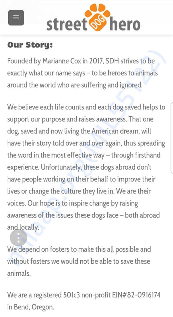 "Bio of the rescue group ""Street Dog Hero"""