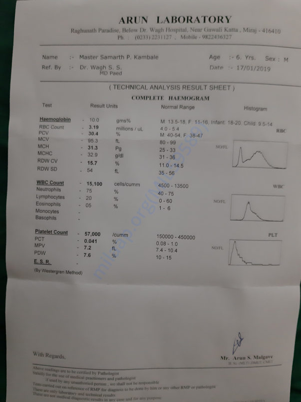 Blood report of samarth