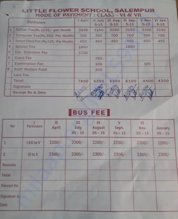 Boy fee card