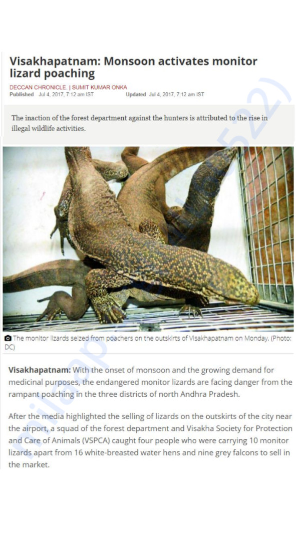 V.S.P.C.A busts the notorious wildlife racket in vizag