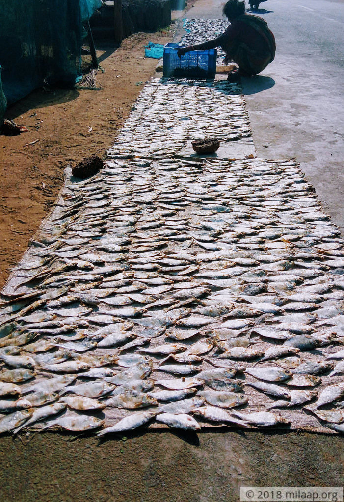The fragrance!! (Dry fish)