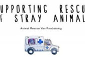 Join This Delhi-Based Artist To Provide A 108 Ambulance Service For Strays