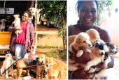 This Bangalorean juggles a hectic job with taking care of 44 dogs and a cat