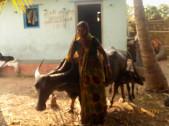 Kamalabai Lakshaman Gunadal