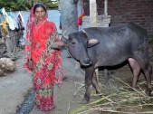 Sujata Yuvaraj Shinde