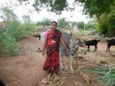 Shridevi Sanjay Hooli