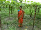 Mampi Sarkar Das