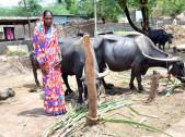 Sunita Doddappa Kamble