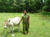 Purnima Nag Dey