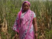 Sangeeta Ashok Mang