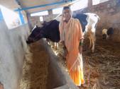 Gouravva Tippanna Kalloli