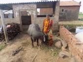 Rajashri Vittal Mang