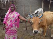Mahadevi Channabasappa Khot