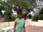 D Geetha T Dhanasekar