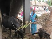 Durgavva Laxman Venkatapur