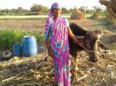 Laxmi Nagappa Gotur