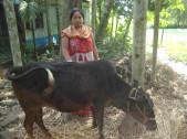 Suchitra Barman Sarkar