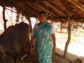 Shiramavva Maruti Harijan