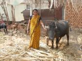 Jayashri Ravasab Sanadi