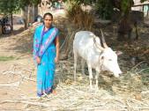 Sunanda Ashok Balannavar
