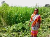 Rupali Sutradhar