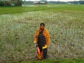 Jharna Roy Biswas