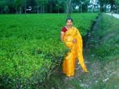 Pinki Das Sarkar