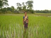 Lakshibala Roy Sarkar