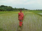 Kalyani Roy Sarkar