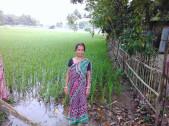 Mayadashi Sarkar