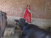 Surgyan Devi