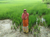Jyotsna Banu