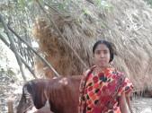 Lakshmi Sarkar