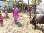 Manjula Purandar Kamble
